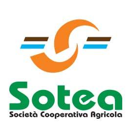 SOTEA-Società-Coop.va-Agricola